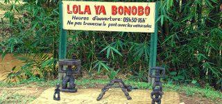 Lola Ya Bonodo