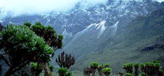 Rwenzori Mountains DRC
