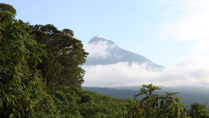 Virunga Conservation Area