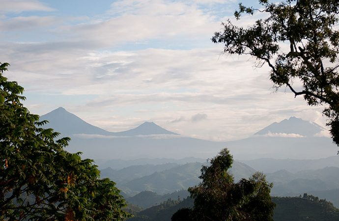 Why Visit Virunga National Park