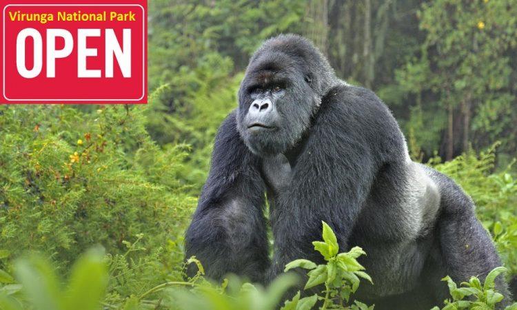 virunga national park Reopens