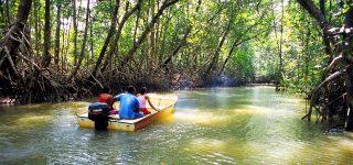 Mangroves National Park