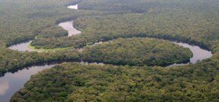 Salonga National Park