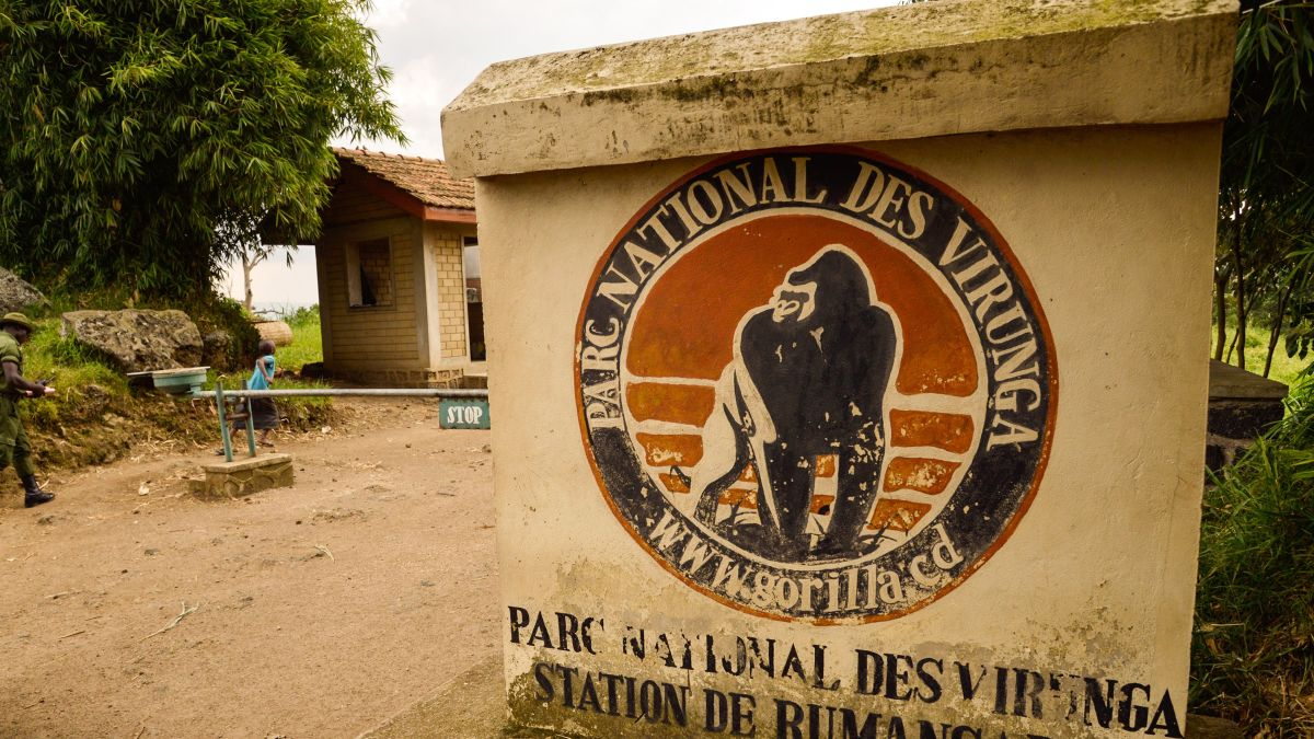 Entrance Fees for Virunga