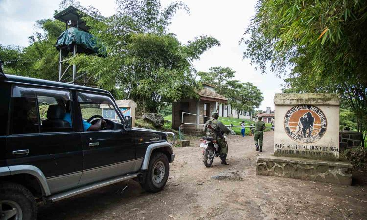 How to get to Virunga