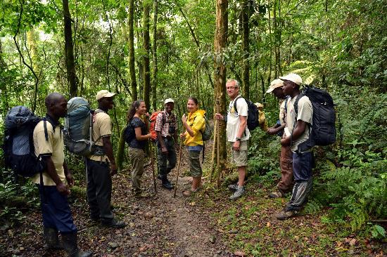 Essentials for a Virunga Safari