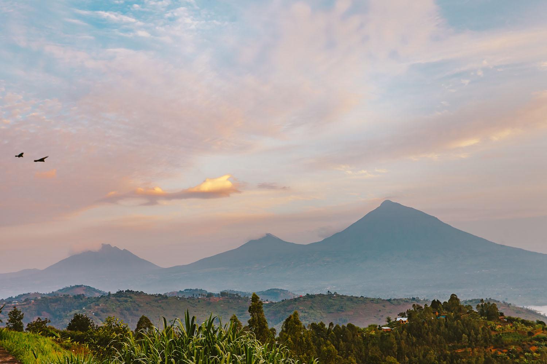 Hiking the Virunga mountains in Uganda