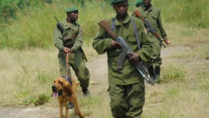 Virunga-National-Park-Ranger-Attack