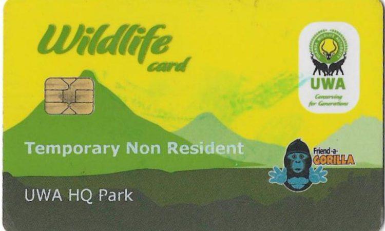Gorilla trekking permits in Uganda 2021