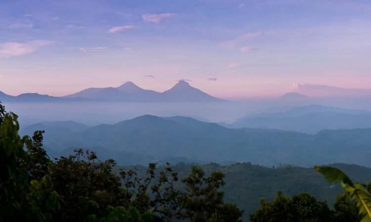 Famous Virunga Mountains
